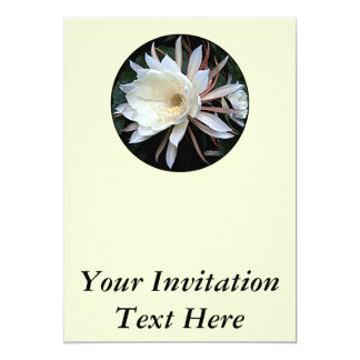 Epiphyte Cactus Flower Card