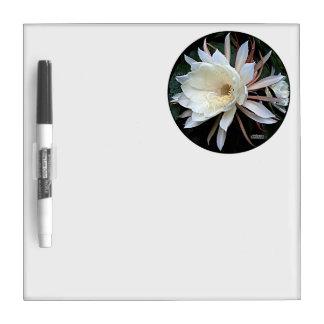 Epiphyte Cactus Flower Dry-Erase Board