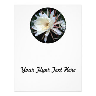 Epiphyte Cactus Flower Flyer