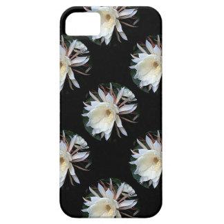 Epiphyte Cactus Flower iPhone SE/5/5s Case