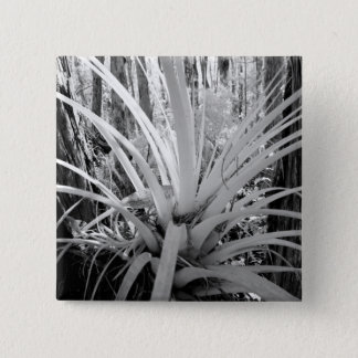Epiphytic tillandsia are common in the Florida, Pinback Button