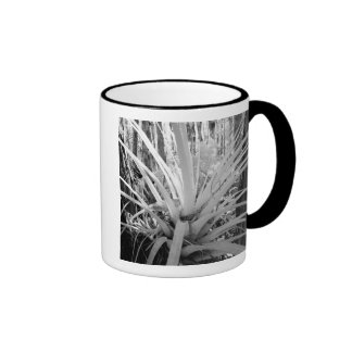 Epiphytic tillandsia are common in the Florida, Ringer Coffee Mug