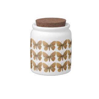 Epirrita autumnata candy jar
