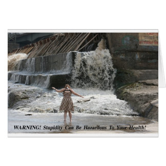 EPITOME OF FOOLISHNESS POSTER GREETING CARD