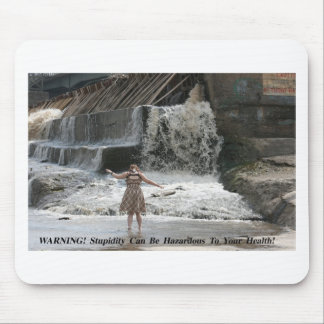 EPITOME OF FOOLISHNESS POSTER MOUSE PAD