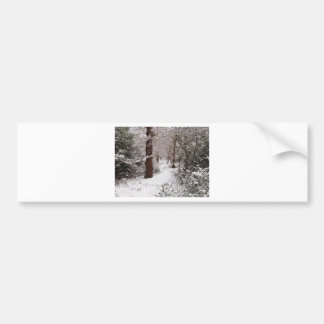 Epping Forest in the snow Bumper Stickers