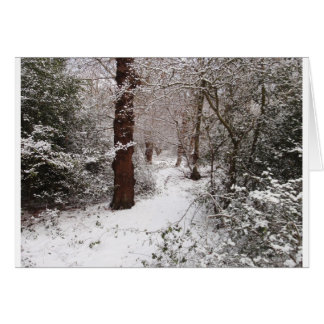 Epping Forest in the snow Greeting Card