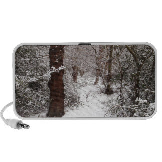 Epping Forest in the snow Travelling Speaker