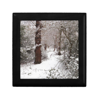 Epping Forest in the snow Trinket Box