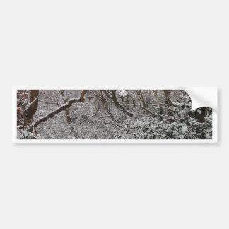 Epping Forest In Winter Car Bumper Sticker