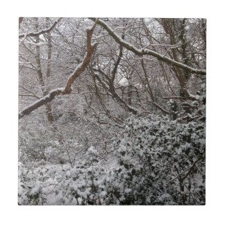 Epping Forest In Winter Ceramic Tiles