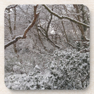 Epping Forest In Winter Drink Coasters
