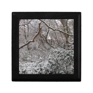 Epping Forest In Winter Keepsake Box