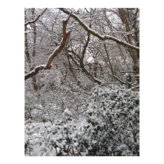 Epping Forest In Winter Letterhead