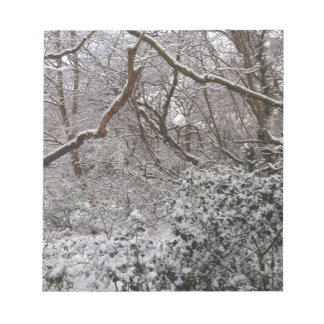 Epping Forest In Winter Memo Note Pads
