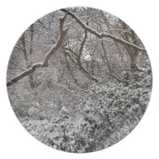 Epping Forest In Winter Party Plates
