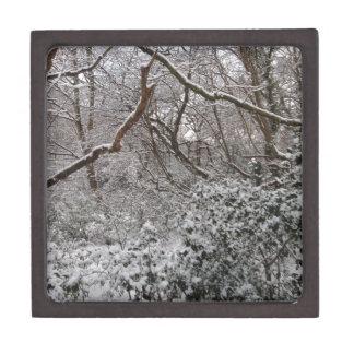 Epping Forest In Winter Premium Trinket Box