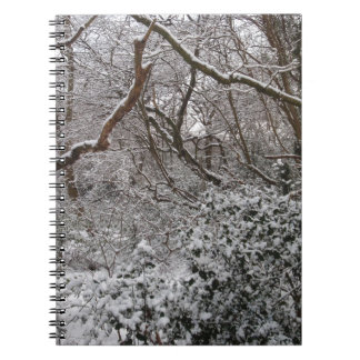 Epping Forest In Winter Spiral Note Books