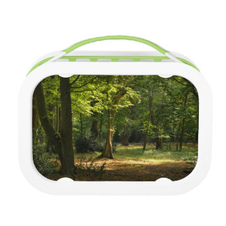 Epping Forest Lunch Box