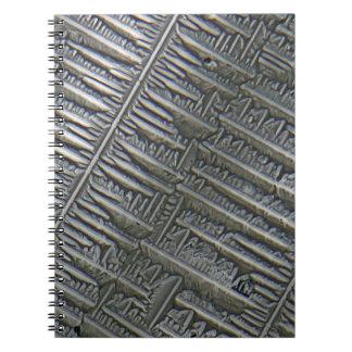 Epsomite debajo del microscopio libretas