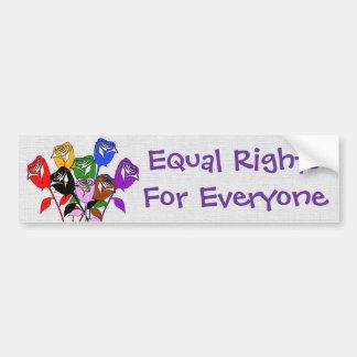 Equal Rights Car Bumper Sticker
