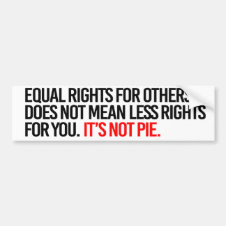 Equal Rights for others does not mean less rights  Bumper Sticker