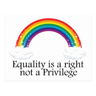 Equality is a right not a privilege postcard