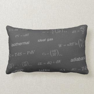 Equations of Thermodynamics Lumbar Pillow