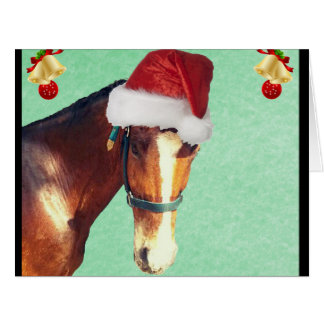 Equestrian Christmas Horse Greeting Cards