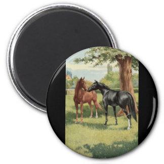Equestrian del semental de la yegua del caballo de imán redondo 5 cm