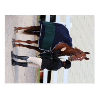 Equestrian Dressage Post Cards