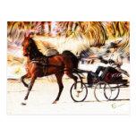 Equestrian   Flames Postcards