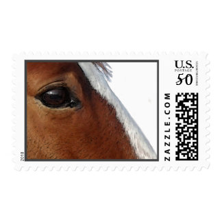 Equestrian Friends High Quality Postage