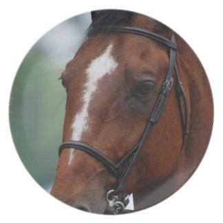 Equestrian Horse Show Plate