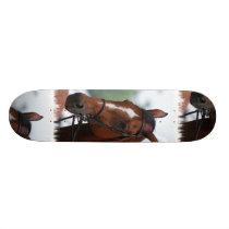 Equestrian Horse Show Skateboard