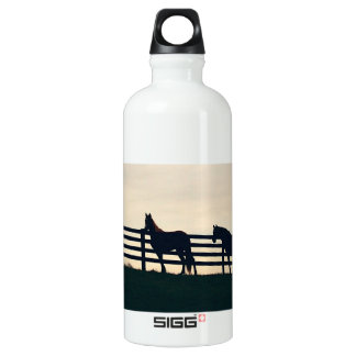 Equestrian Horses at the Pasture Fence Aluminum Water Bottle
