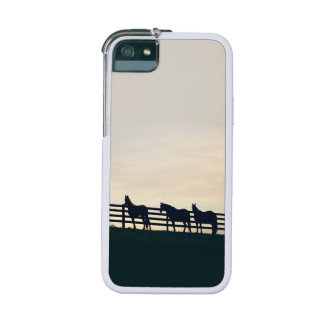 Equestrian Horses at the Pasture Fence iPhone 5 Cases