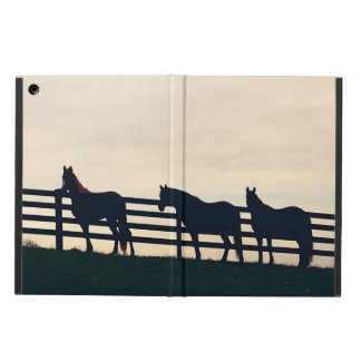Equestrian Horses at the Pasture Fence Cover For iPad Air