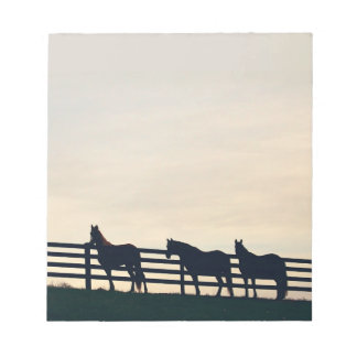 Equestrian Horses at the Pasture Fence Note Pad