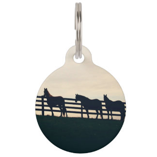 Equestrian Horses at the Pasture Fence Pet ID Tag