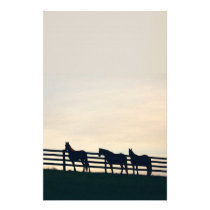 Equestrian Horses at the Pasture Fence Stationery