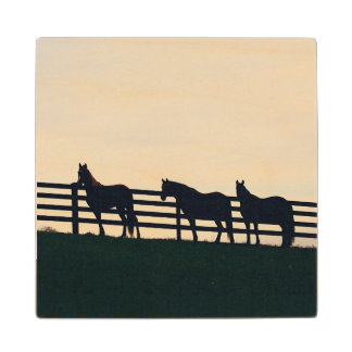Equestrian Horses at the Pasture Fence Wood Coaster