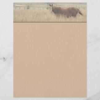 Equestrian Letterhead