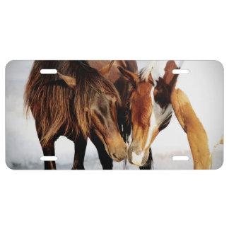 Equestrian Pony Love License Plate