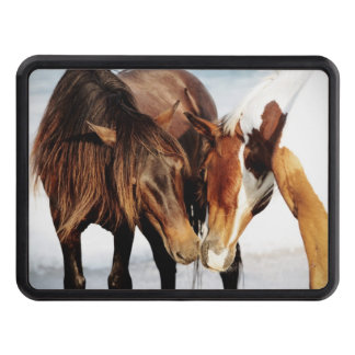 Equestrian Pony Love Tow Hitch Cover