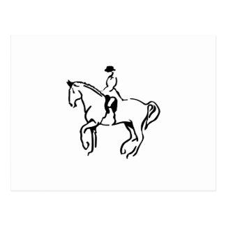 Equestrian Postcard