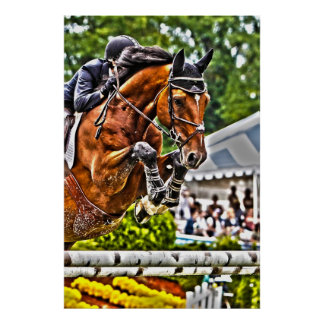 Equestrian Sports-Jumper Poster
