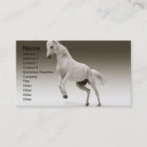 Equestrian White Mare Horse Business Card