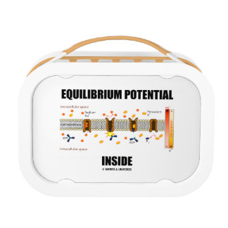 Equilibrium Potential Inside Active Transport Lunch Box