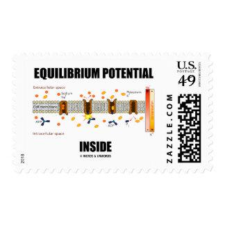 Equilibrium Potential Inside Active Transport Postage Stamp
